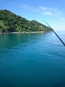 穏やかな下津の海