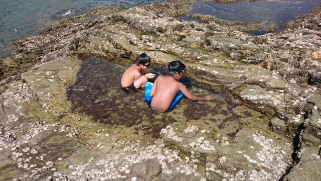 蓬莱岩の水たまり