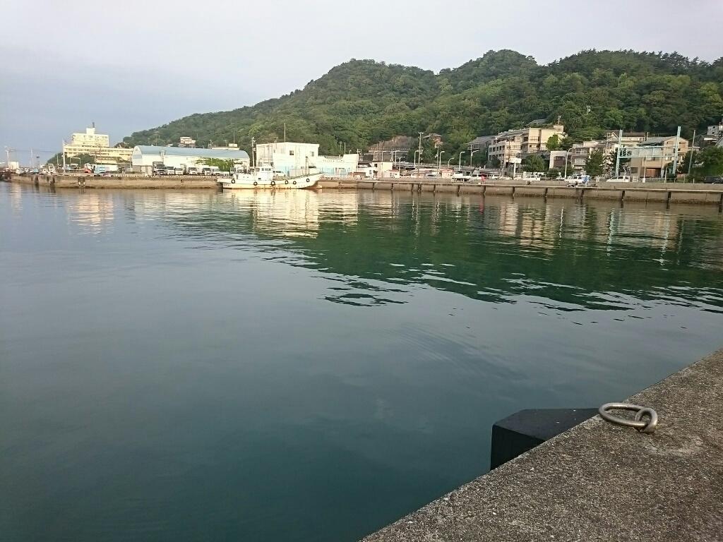 釣り場・新和歌浦漁港1
