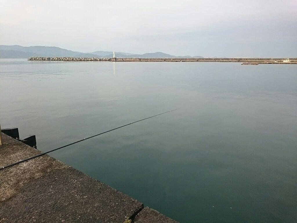 釣り場・新和歌浦漁港2