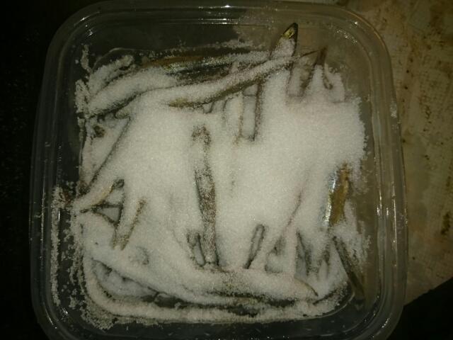 たっぷりな塩のキビナゴ