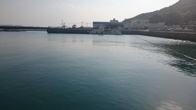 ゴールデンウィーク初日の新和歌浦漁港