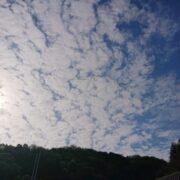 岸和田の空